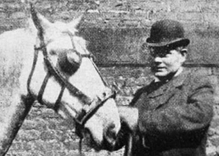 Глупость по-викториански: очки для лошадей.