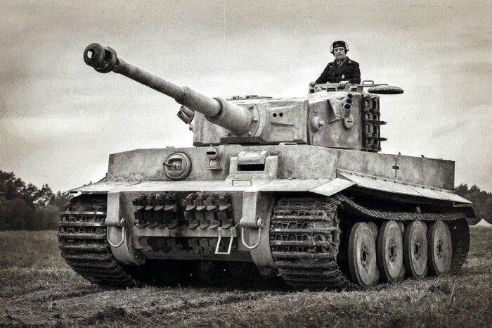 Создавалась машина на базе танка Тигр. |Фото: militaryarms.ru.