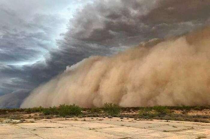 Не всякий песок может быть поднят бурей. |Фото: Twitter.