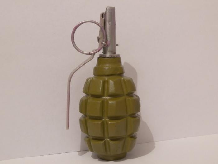 И у гранат есть срок годности. |Фото: inforesist.org.