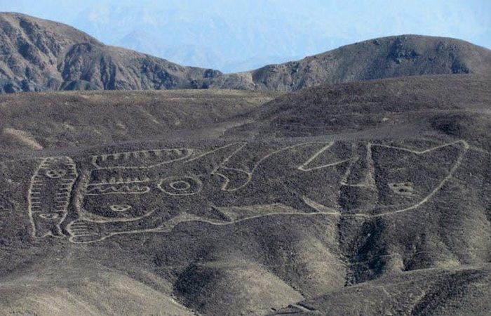 Древняя конструкция: косатка из Палпа.
