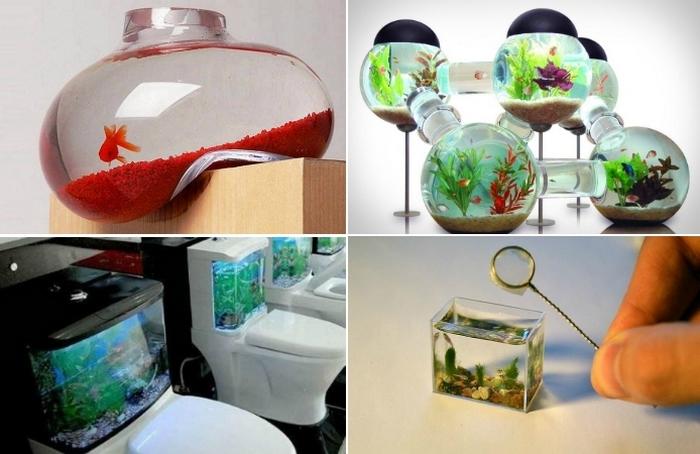 Творческие идеи устройства аквариумов дома и на работе
