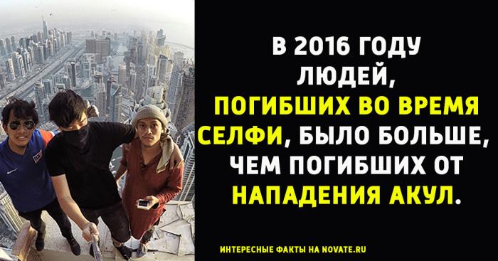 http://www.novate.ru/files/u34508/bacha-posh-10.jpg