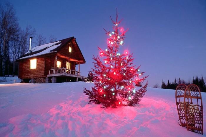Новогодние праздники - идеальное время для злоумышленников.