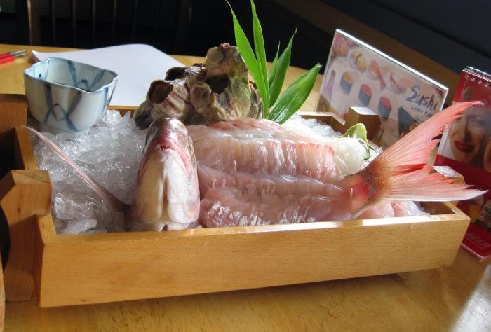 Рыба Инь Ян.
