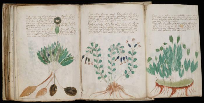 Книга Сойга из библиотеки Джона Ди.