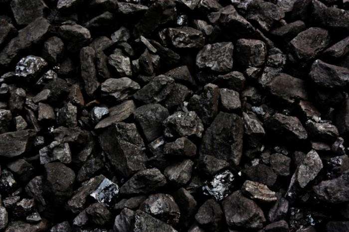 Формирование угля как предмет научных споров.