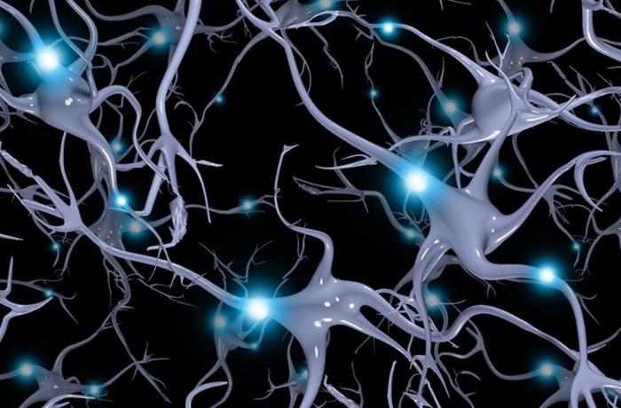 Когда мозг находится в состоянии крайнего стресса, высвобождаются эндорфины.