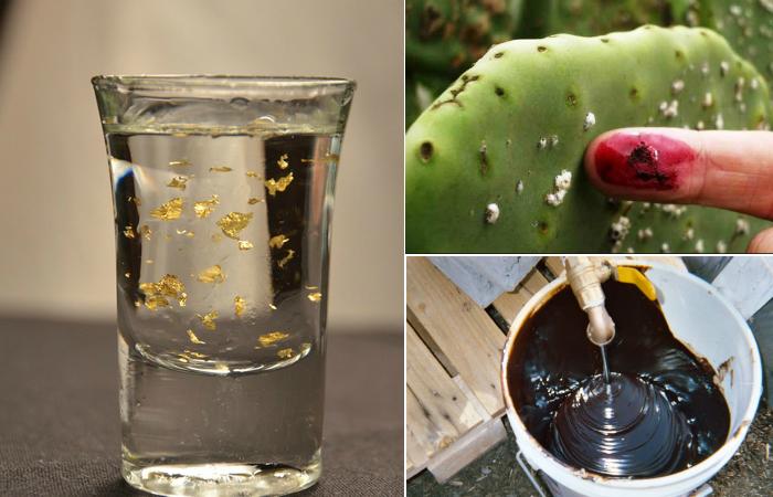 Необычные ингредиенты для пищевой промышленности.
