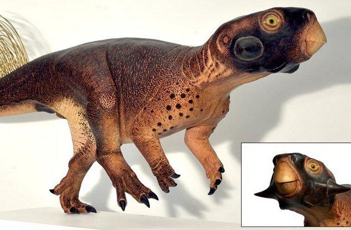 Так выглядел пситтакозавр.