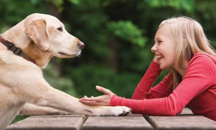 Люди, которые общаются с животными.