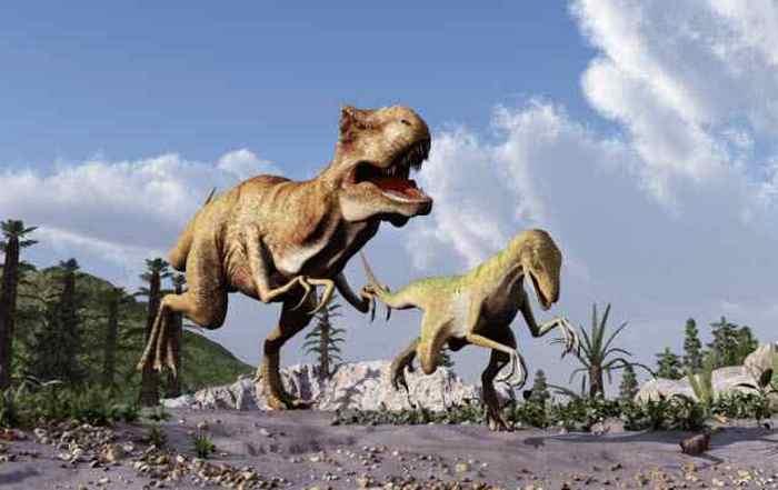 Общение с динозаврами.
