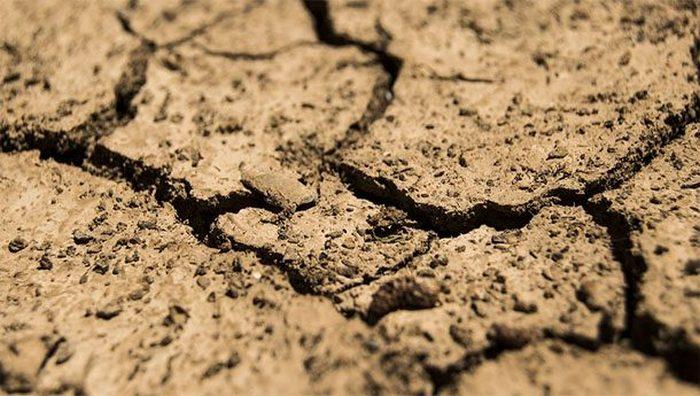 Причина вымирания человечества: засуха.