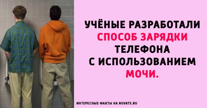 http://www.novate.ru/files/u34508/fact_novate-4.jpg