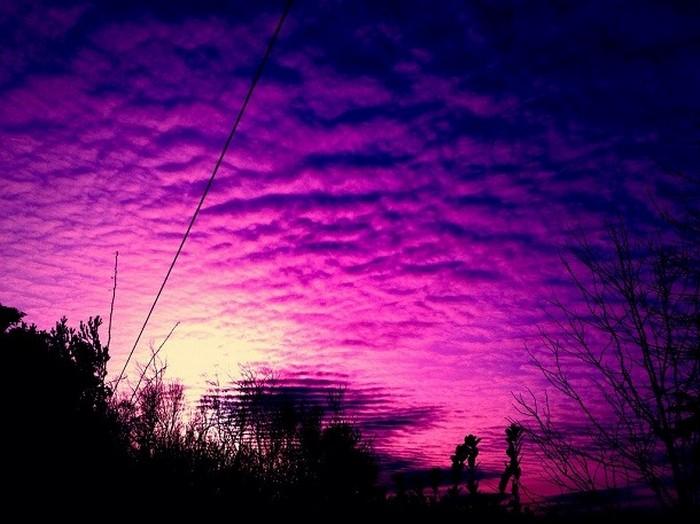 Настоящий цвет неба - фиолетовый.