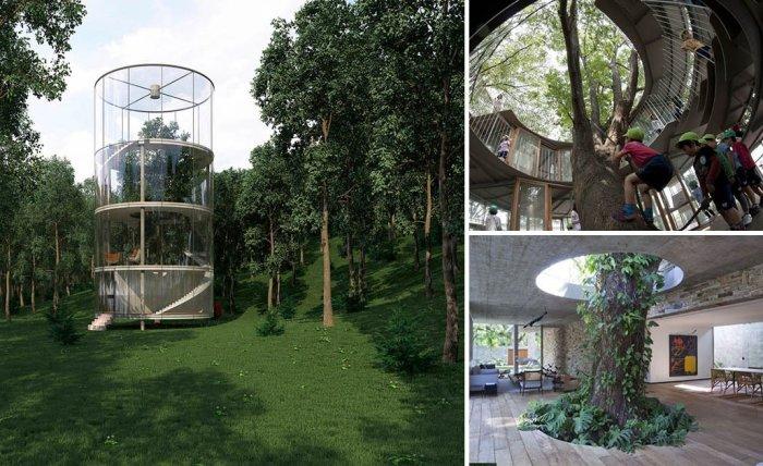 Удивительные сооружения, построенные вокруг деревьев.