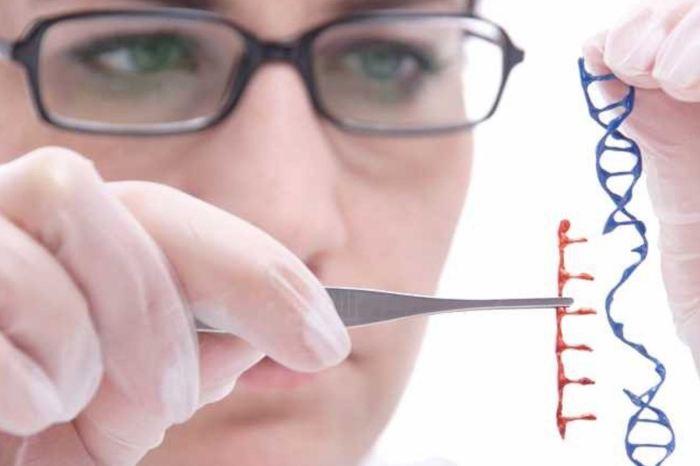 Шаг к  обретению бессмертия: генная терапия.