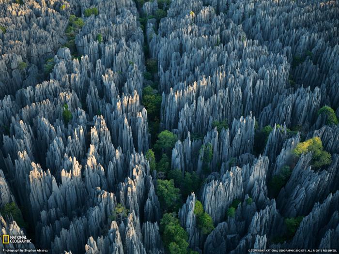 Национальный парк Цинжи де Бемараха.