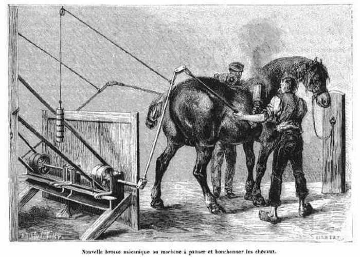 Устройство для механической чистки лошадей.