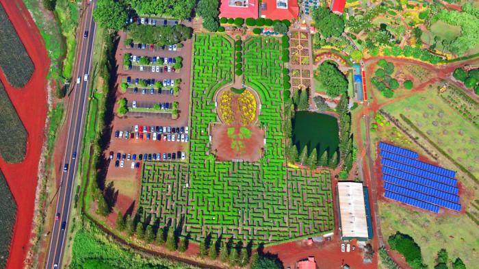 Ананасовый лабиринт (Вахайава, Гавайи)