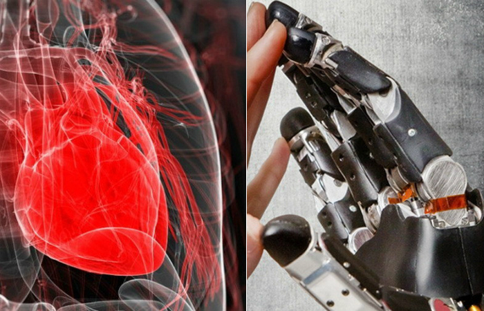 10 искусственных человеческих органов