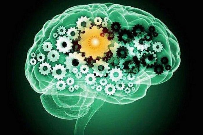 Психологические особенности, знание которых позволит человеку лучше управлять собой.