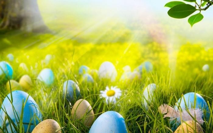 Самая большая россыпь пасхальных яиц.