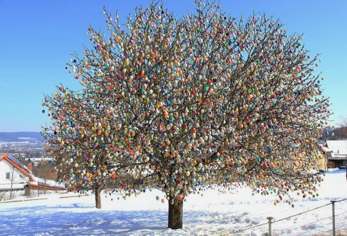 Пасхальные яйца на дереве.