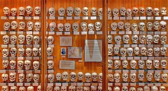 Музей, посвящённый истории медицины.
