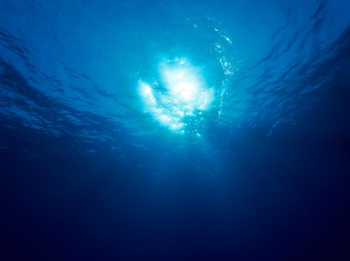 Солнечный свет под водой.