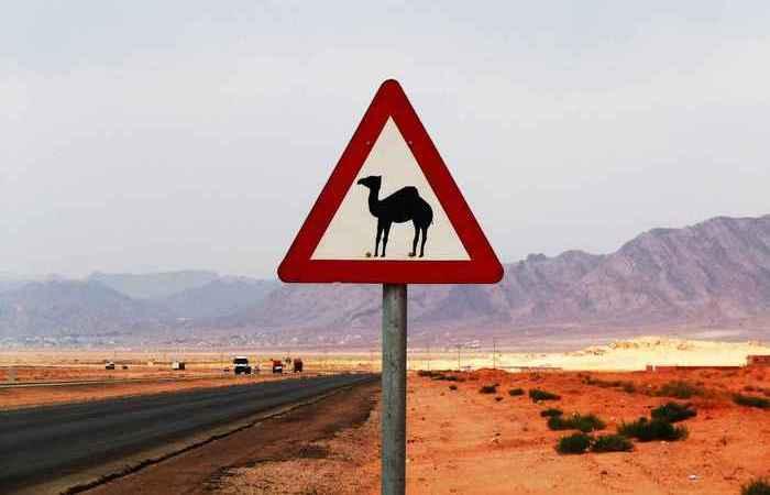 Самые нелепые правила дорожного движения.