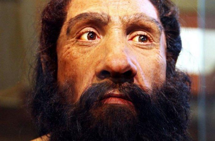 От неандертальца к гомо сапиенс.