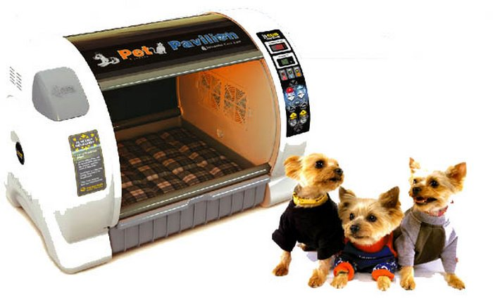 Пентхаус для домашних животных.