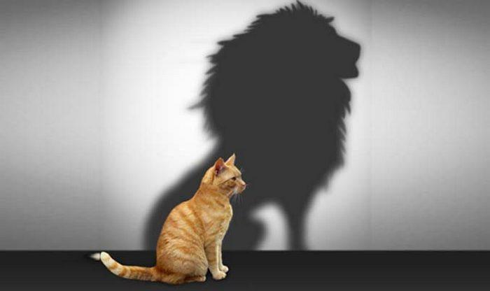 Главное - уверенность в себе!