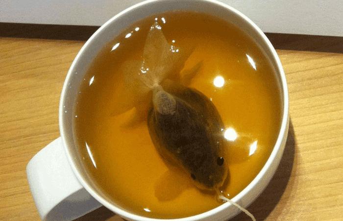 Чайные пакетики, которые превращаются в золотых рыбок.