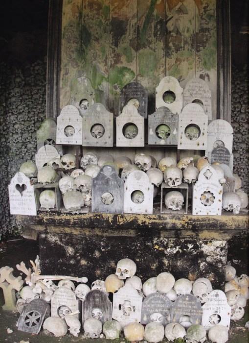 Самая экстравагантная в мире  коллекция костей.