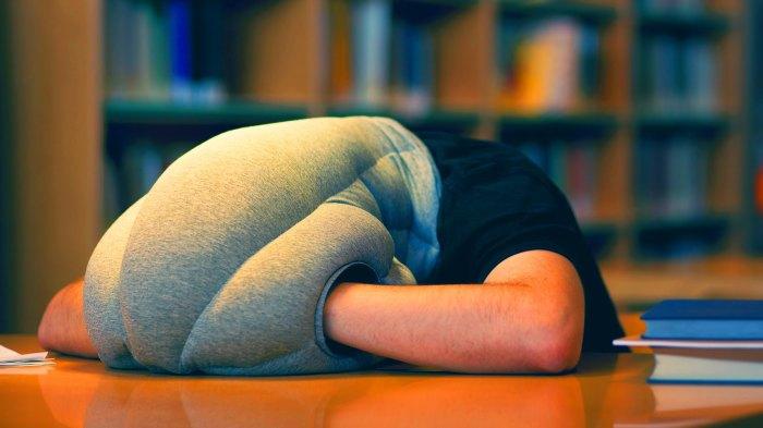 Подушка-сплюшка.