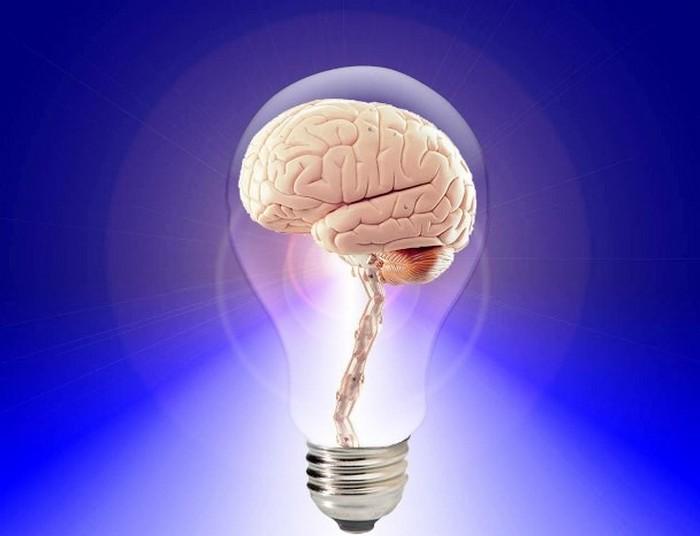 Мозг принимает решения