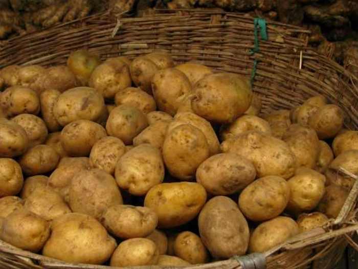 Стипендия картофельной промышленности.