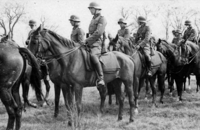 Лошади вермахта