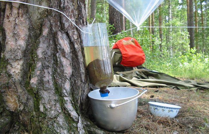Приказано выжить!: используй фильтр из древесного угля и бутылки.