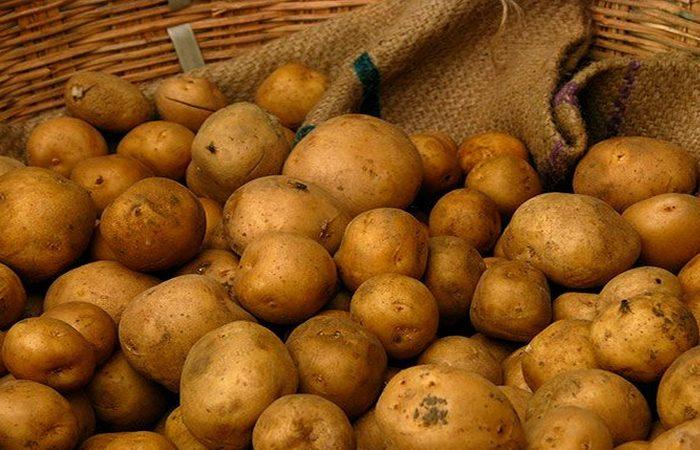 Приказано выжить!: используй картофель.