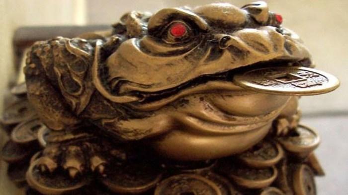 Талисман на удачу: денежная жаба.