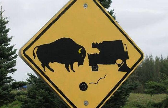 Забавные дорожные знаки, которые заставляют улыбнуться.