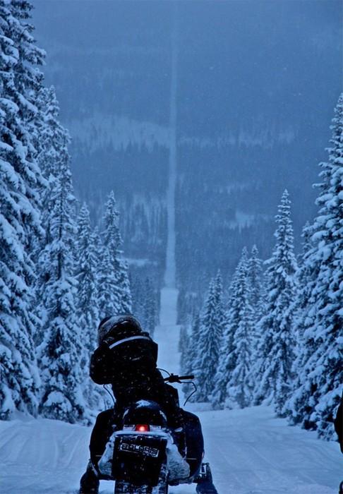 Покататься на снегоходе между Норвегией и Швецией.