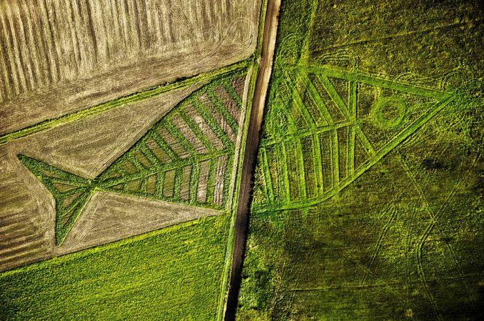 Нарисовать круг на поле на границе между Польшей и Украиной.