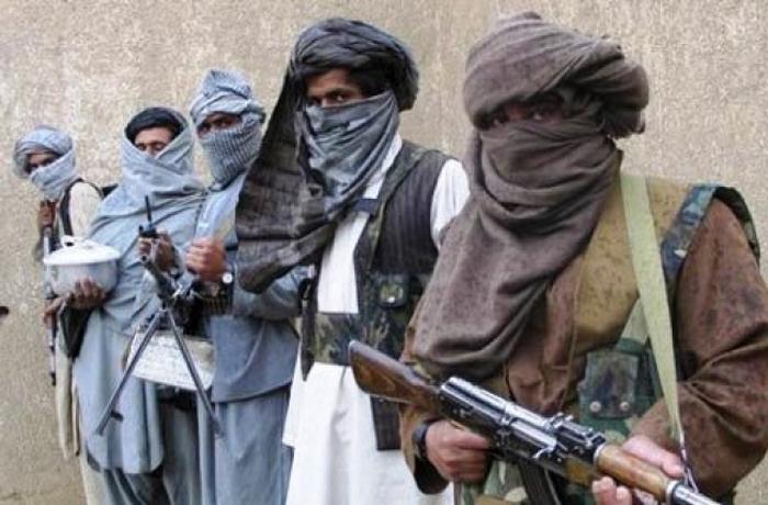 Виагра против талибов.