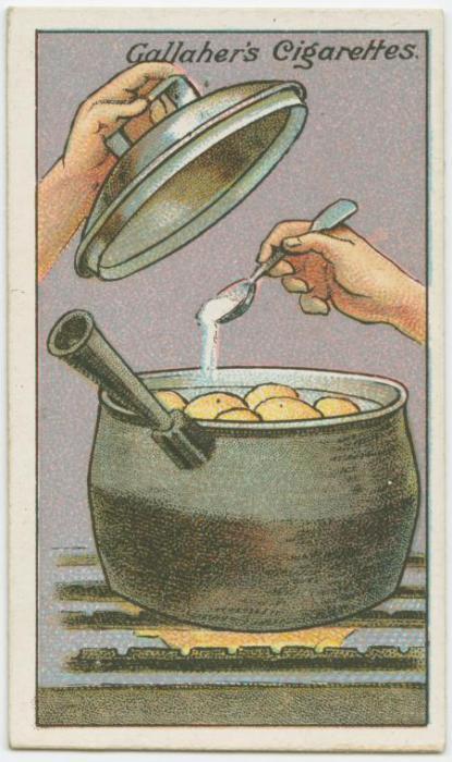 Как правильно варить подберезовики - dc9
