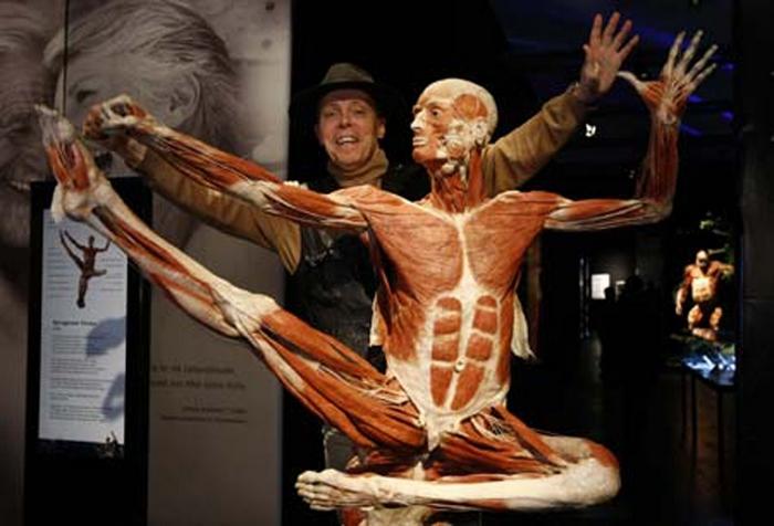Экспонат выставки человеческих тел.