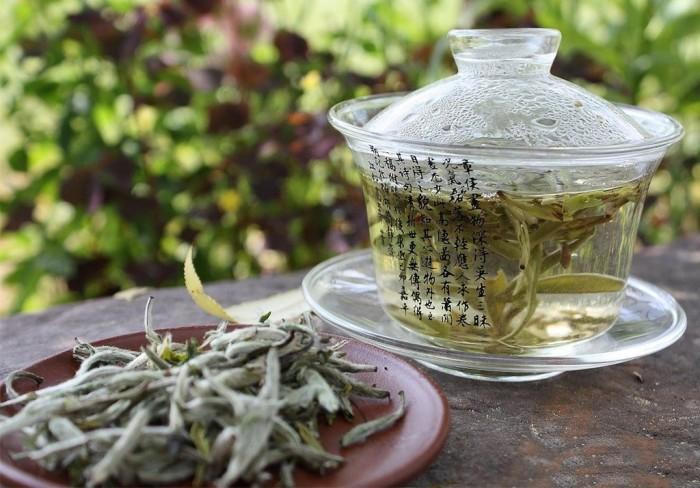 Белый чай: успокоит, улучшит настроение и не только.